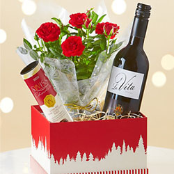 Rose & Red Wine