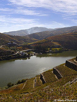 View on Douro Vineyard hills with a lake in the center